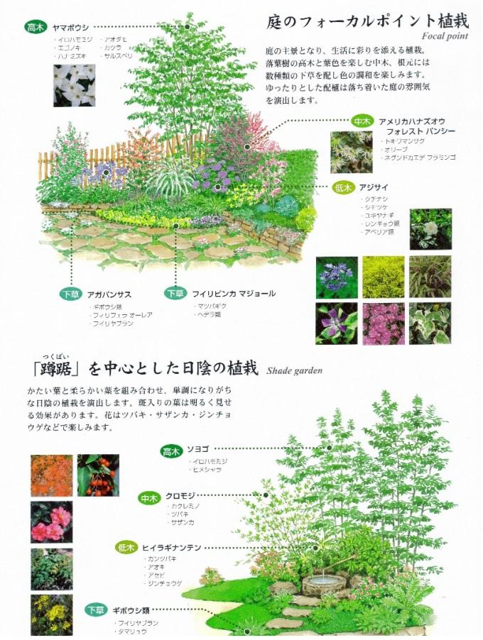 庭のフォーカルポイント植裁