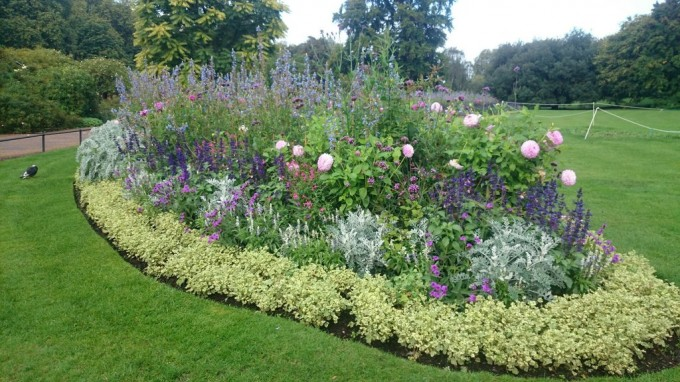 ハイドパークの花壇
